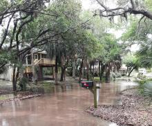 Dolphin Street Flooding Picture April 2020